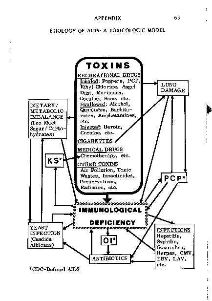 A Toxicologic Model